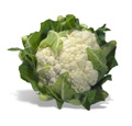 Can Cauliflower Help Prevent Bladder Cancer?